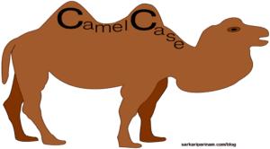 CamelCase क्यों लिखी जाती है ?